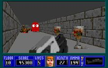 Wolfenstein 3D - Cover of Darkness (6)